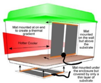 habistat_heat_mat2